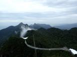 708 mètres. Le SkyBridge, balade à 100 M au dessus de la canopé.