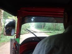 Lendemain départ pour le Pidurangala et comme à notre habitude ....... avec les pluies diluviennes de la veille. On finira à pied.