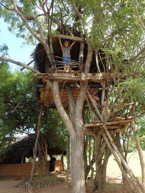 Dans la cabane au-dessus de la maison. Il veut la même à la Martinique.