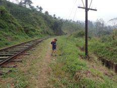 Chemin normal en fait pour tous les villageois.