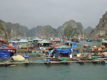 Nous traversons les villages flottants de pêcheurs.