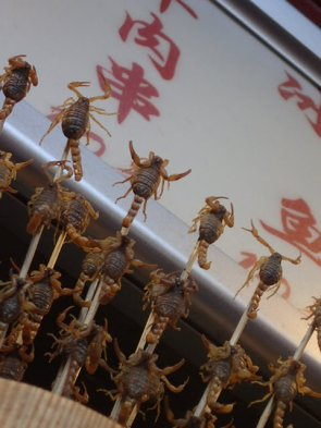Marché de Donghuamen: Scorpions vivants en brochette.