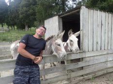 CC mes amis, et non raté, ce ne sont pas des ânes mais de tous petits chevaux.