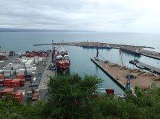 Napier: belle montée à pied pour voir le point de vue!! bon on ne voit que le port. Petit clin d'oeil à notre ami Vincent.