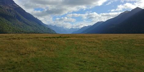 The Eglinton Valley creusée par les glaciers et recouverte d'herbe touffue d'or.