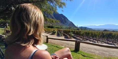 Pas belle la vie? Du soleil, du bon vin et .............