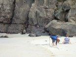 Et là ou est sorti le pingouin un autre éléphant de mer nous regarde.