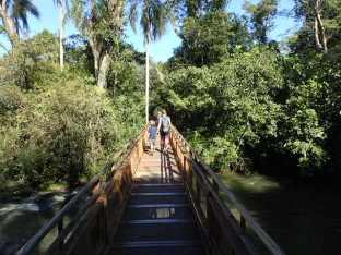 Promenade sur l'eau et ds la jungle.