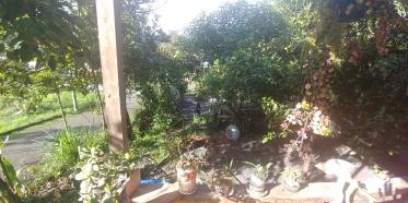 Le jour se lève sur notre dernière matinée chez Edouardo.