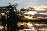 Petit tour à la laguna pour le coucher de soleil et..