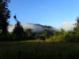 """Nous passons au-dessus de """"la forêt des nuages""""!!"""