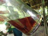 Et le chaman nous présente des liquides qui soignent. Ca fait un peu rhum arrangé.