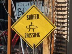Attention aussi aux surfeurs, bon bcp moins nombreux que nos chers iguanes.