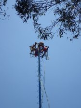 Il s'agit d'une danse et escalade d'un poteau de 30 mètres.