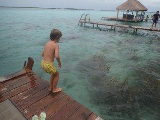 Concours de plongeons!!