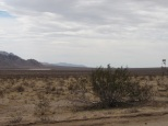 Du désert……….