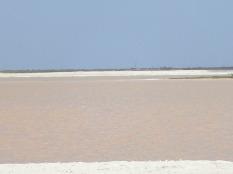 Las Coloradas, mer plus ou moins rose d'après la salinité.